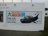 Cimg9544