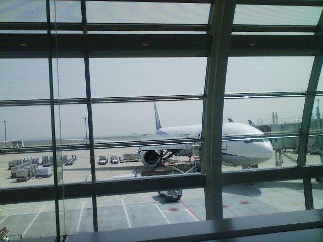 乗る飛行機