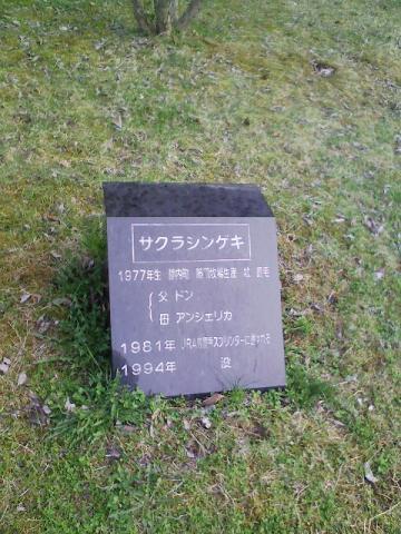 サクラシンゲキの碑