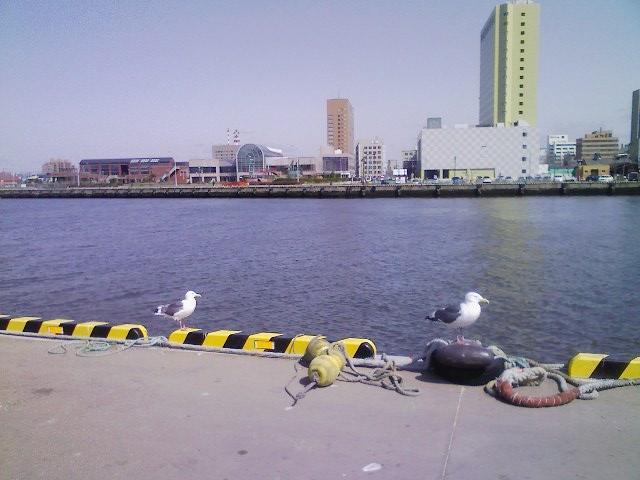 釧路川河口